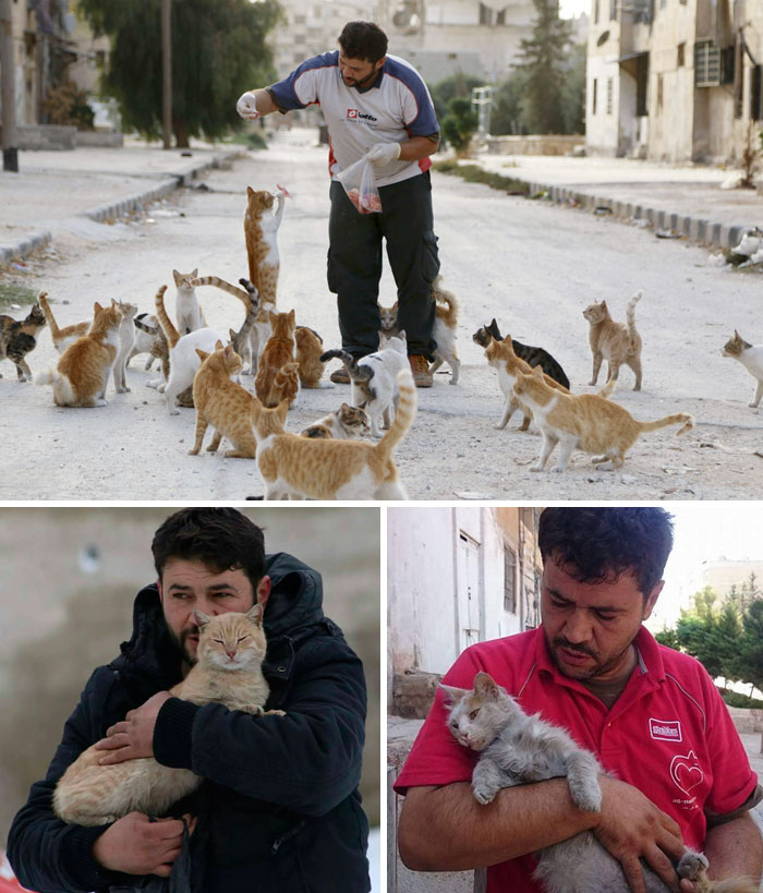 People Are Fleeing War-Torn Aleppo But This Man Is Staying To Care For Abandoned Cats
