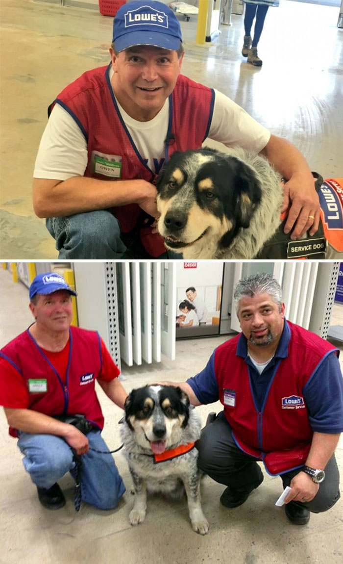 This Man Couldn't Get A Job Because Of His Service Dog But This Store Hired Them Both