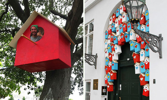 This Man Made 3500 Birdhouses From Scrapwood To Keep Birds In Cities