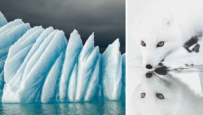 15+ Iceland Photos You Won't Believe Are From This Planet