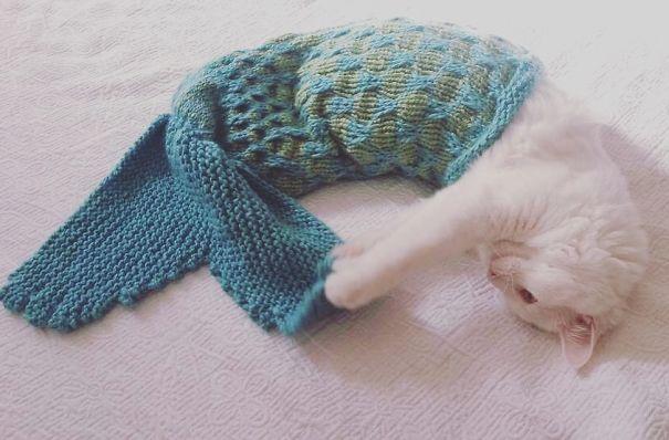Cat Mermaid Blanket