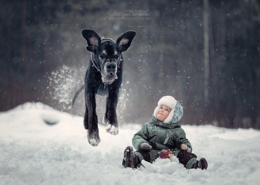 Piccoli bambini ei loro cani grandi