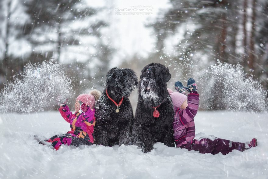 Little Kids And Their Big Dogs