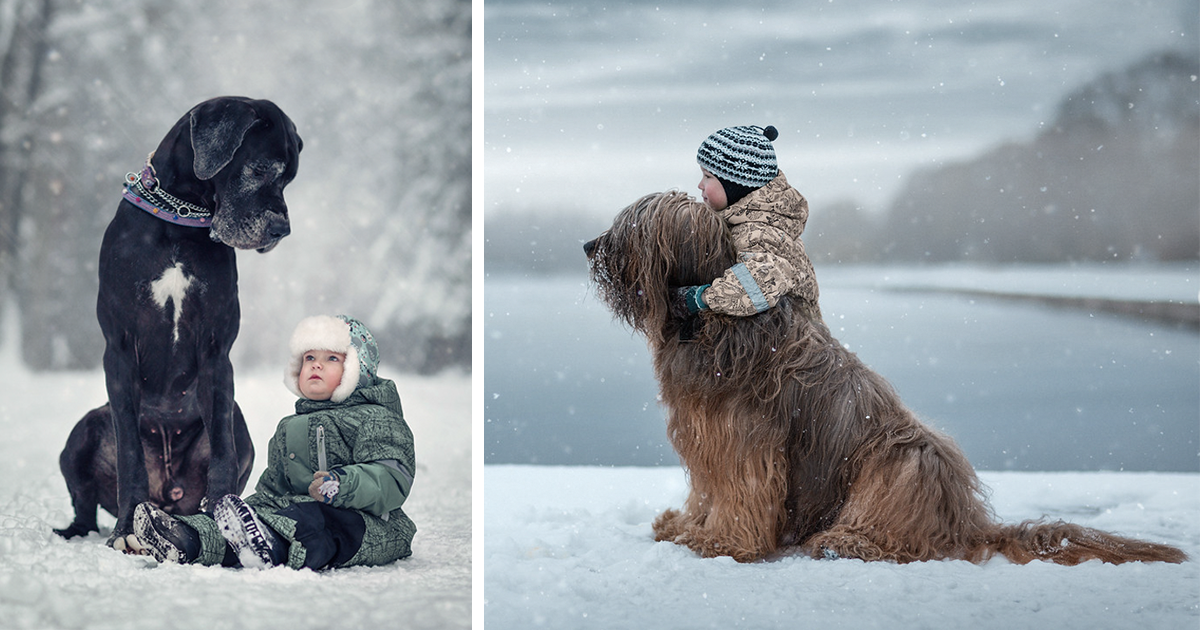 little kids and their big dogs bored panda - Images Of Little Kids