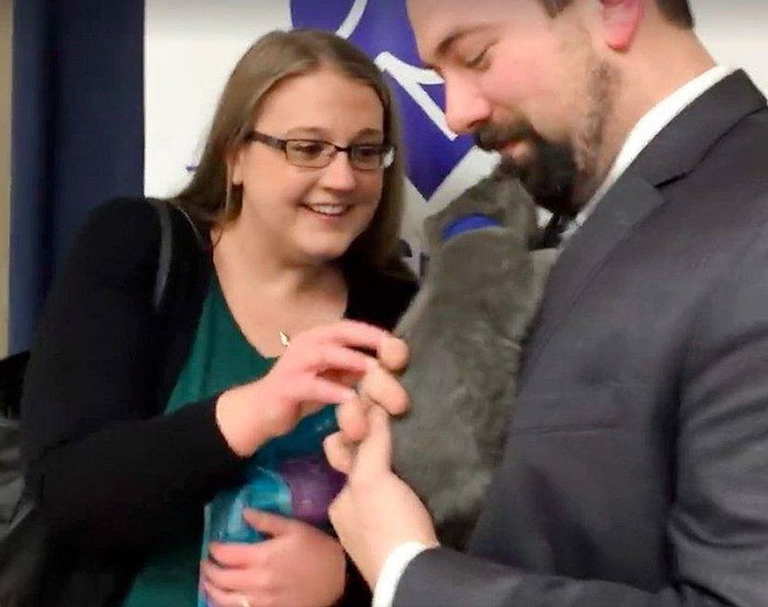 man-proposes-girlfriend-tiny-rescue-cat-6
