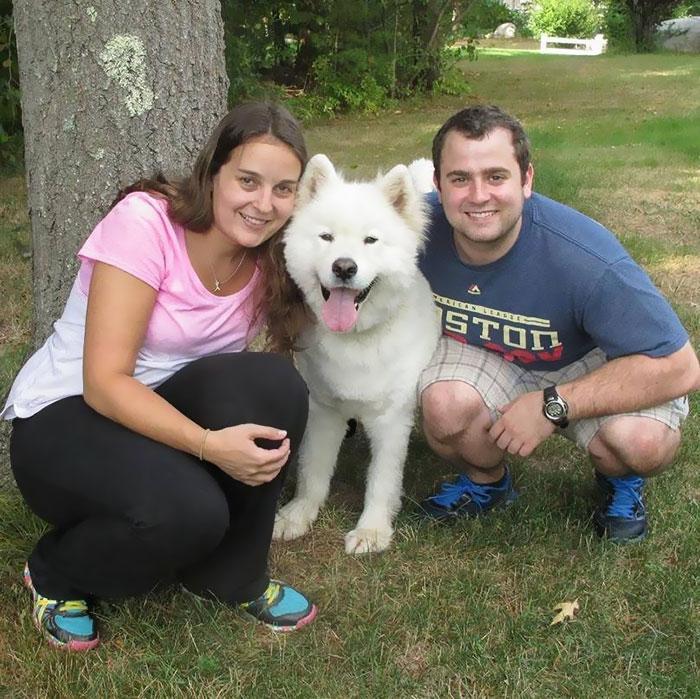 meat-farm-dogs-reunite-kenji-sophia-4