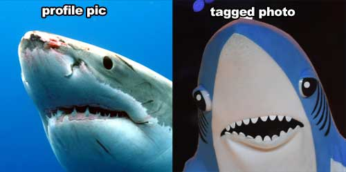 profile-photo-vs-tagged-left-shark-584fba6198be9.jpg