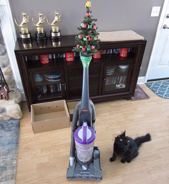 Resultado de imagem para protect christmas tree from cats