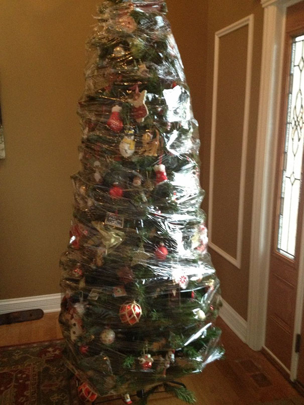 Where To Put The Christmas Tree 15+ genius people who found a way to protect their christmas trees
