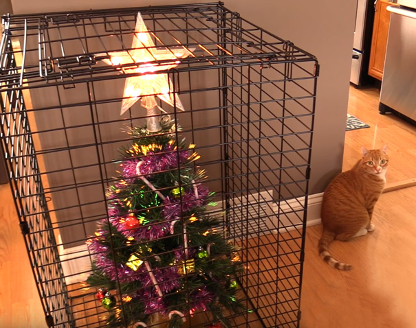15 Genius People Who Found A Way To Protect Their: christmas tree cat tower