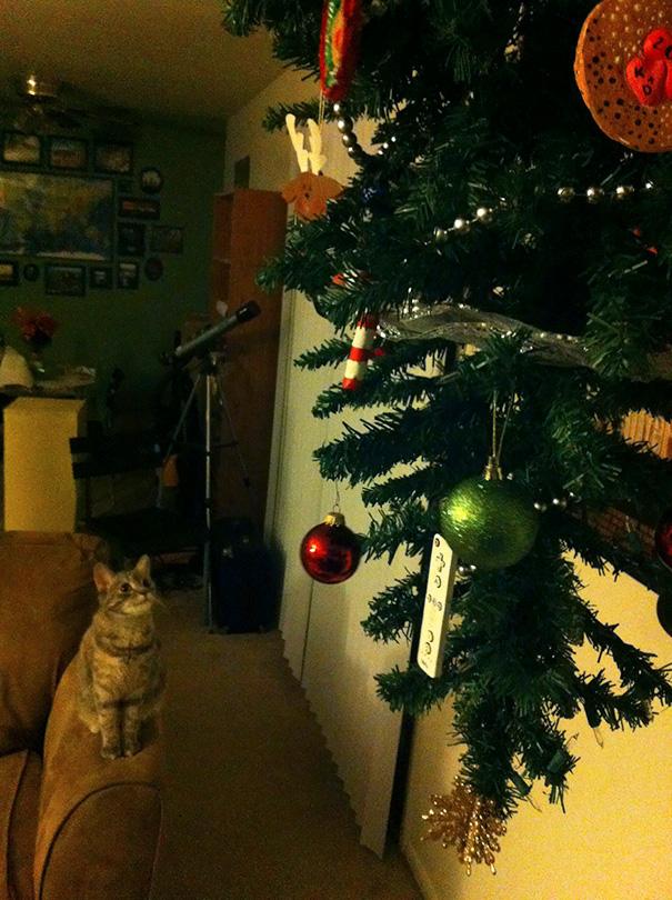 Anti-gravity Holiday Tree