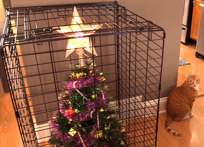 15+ personas ingeniosas que encontraron la forma de proteger sus árboles de Navidad de perros y gatos cabrones