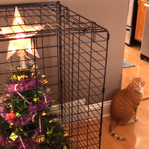 15+ Genius People Who Found A Way To Protect Their Christmas Trees From Asshole Cats And Dogs