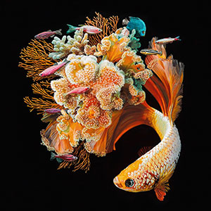 Hyperrealistic Paintings Of Fish Merged With Their Surroundings By Lisa Ericson