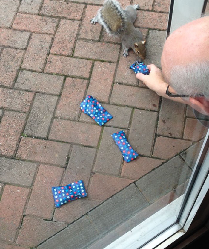 tiny-christmas-presents-squirrels-dad-6