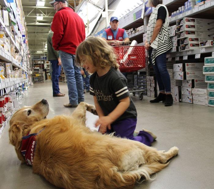 veteran-dog-hardware-store-lowe-15