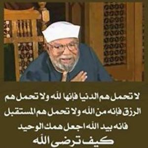 El-Sayed Nosseir