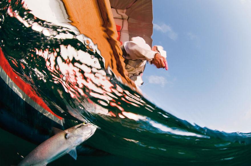 Fisherman & Bluefish