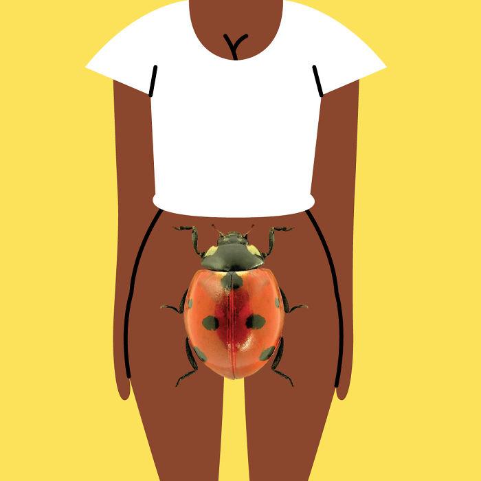 Nicaragua - Bicho, Alias 'Bug'