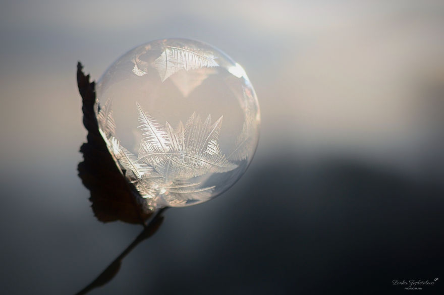 This Is What Happens To A Soap Bubble When Released In Minus Degree Air