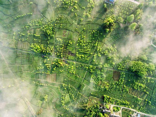 Dron-Photographs-5869f03753d3b.jpg
