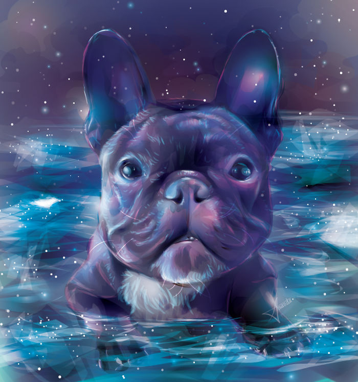 I Draw Digital Pet Portraits That Are Out Of This World