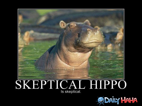 Skeptical-Hippo-is-Skeptical-586d7cfec1fa3.jpg