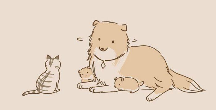 animal-friends-cat-dog-comics-lynal-10