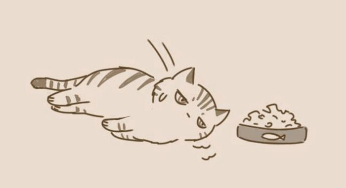 animal-friends-cat-dog-comics-lynal-14