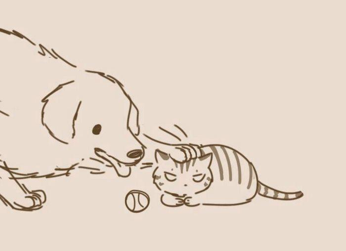 animal-friends-cat-dog-comics-lynal-17