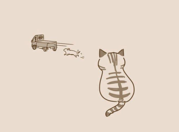 animal-friends-cat-dog-comics-lynal-18