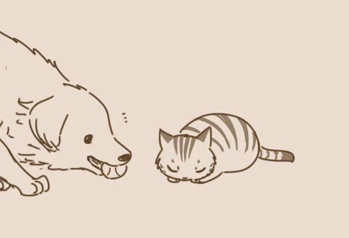 animal-friends-cat-dog-comics-lynal-24