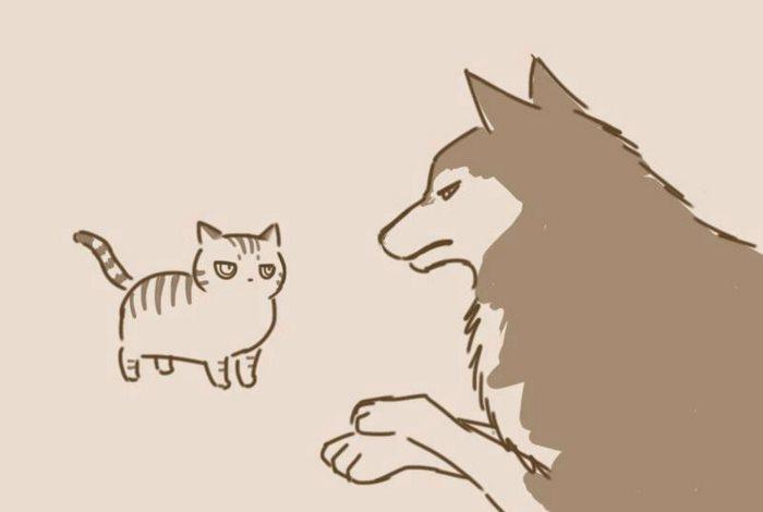 animal-friends-cat-dog-comics-lynal-25