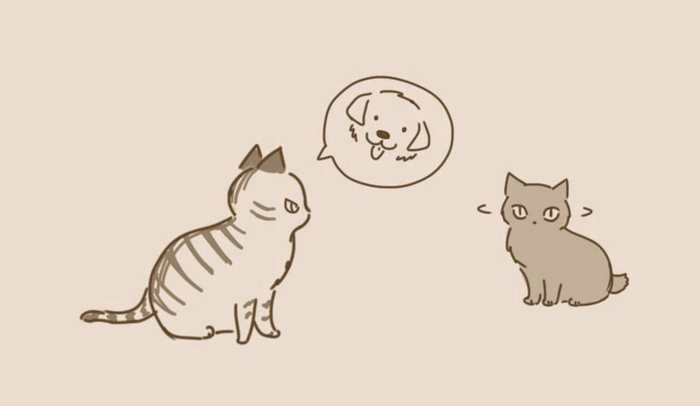 animal-friends-cat-dog-comics-lynal-3
