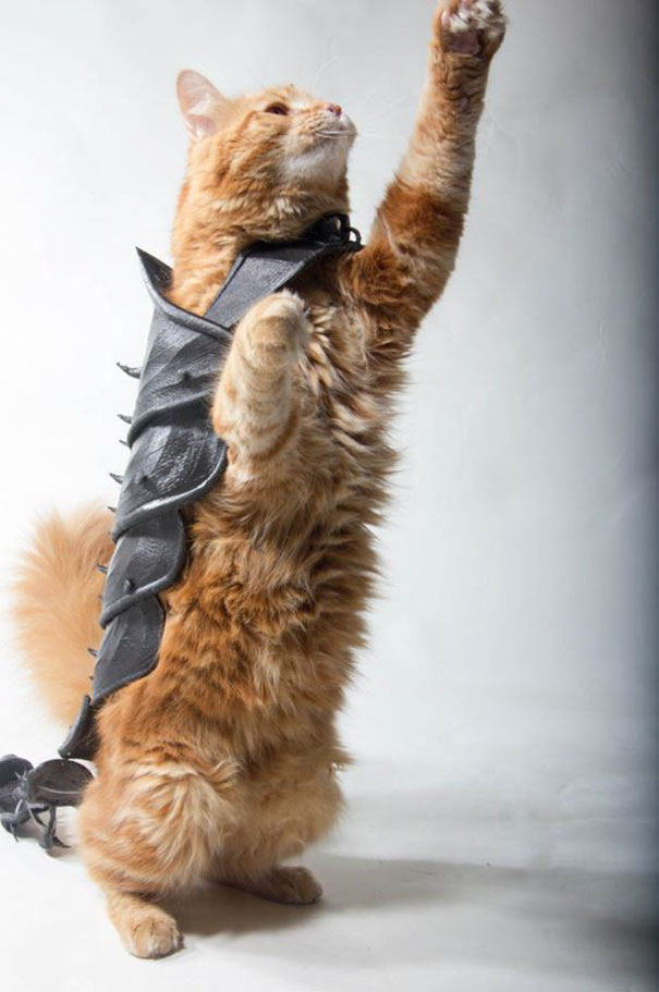 cat-armor-3d-print-that-thing-10