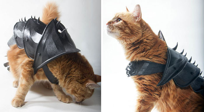 People Are 3D Printing Cat Armor Using This Blueprint, And It's Pawsome