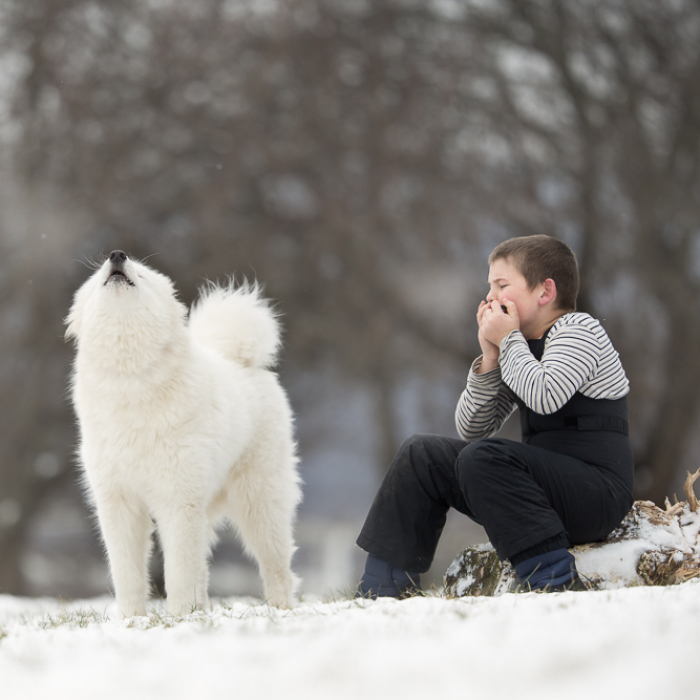 He Sat Alone In The Softly Falling Snow Until His Best Friend Heard Him