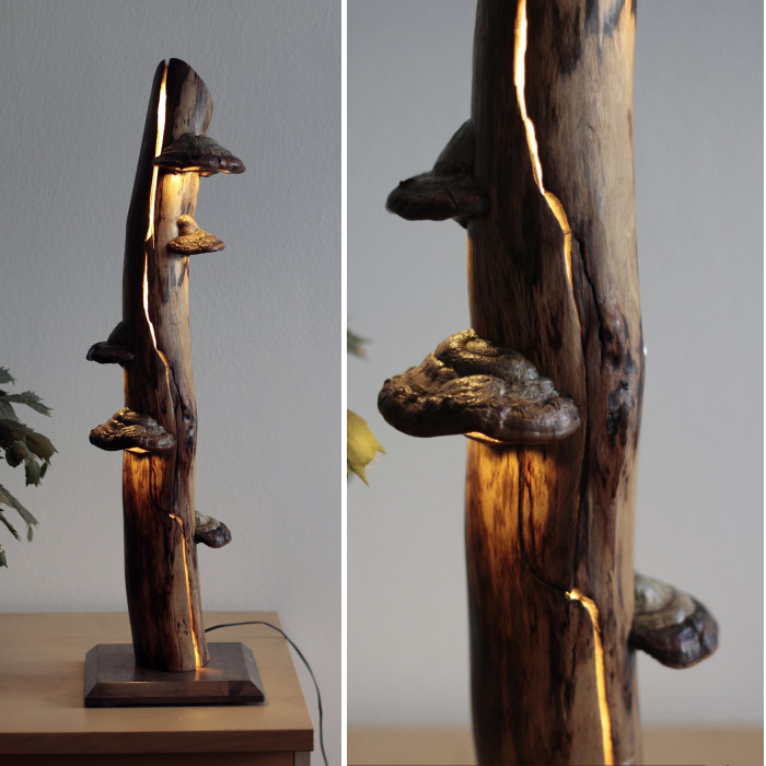 I Create Unique Lamps Out Of Real Mushrooms And Mountain Crystals