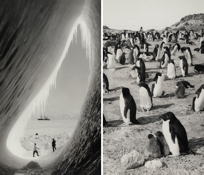 Fatal 1912 Scott's Expedition To The South Pole Documented By Henry Robertson Bowers