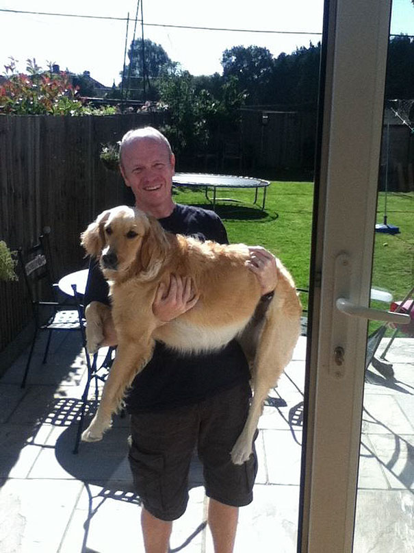 ''I Don't Want A Dog! We Should Never Get One!'' Almost 2 Years Later Dad: ''I Still Don't Want A Dog!''