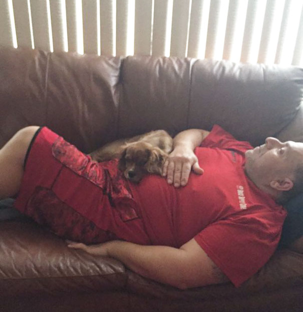 """Always Catch My Dad Saying """"He's Not A Dog Person"""". He Loves Red And Won't Admit It"""