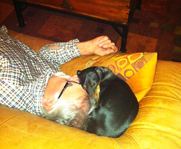 """I Don't Need A Dog!"", My Dad Said. Now: Best Buddies Napping Together"