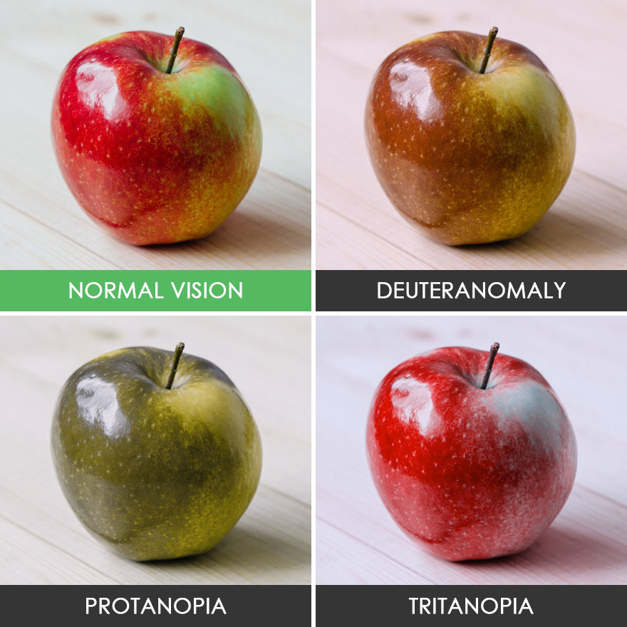 You Ll Be Amazed How People With Color Blindness See The