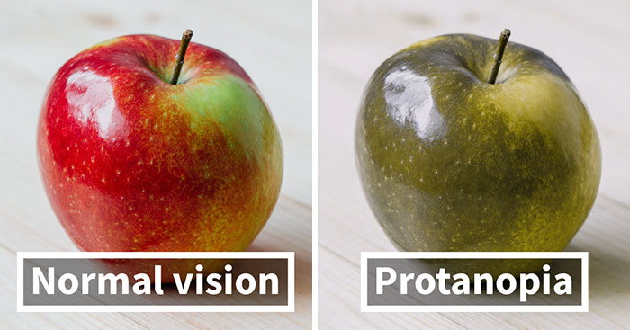You'll Be Amazed How People With Color Blindness See The World (10+ Pics)