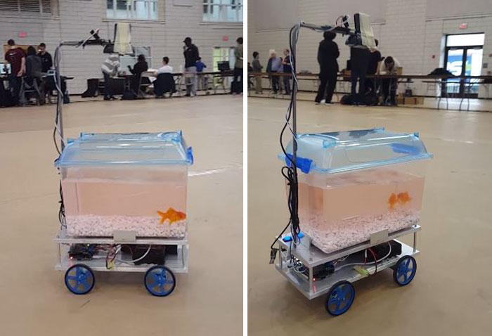 fish-controls-robotic-tank-1