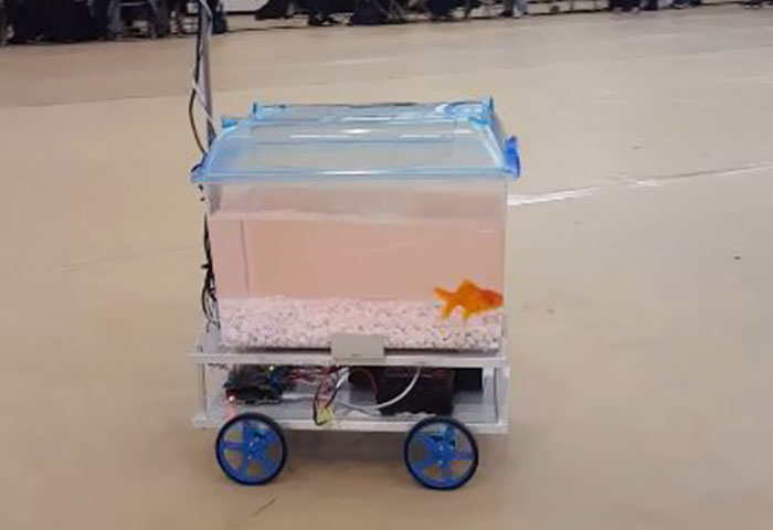 This Fish Can Decide Where To Go By Controlling Its Robotic Fish Tank