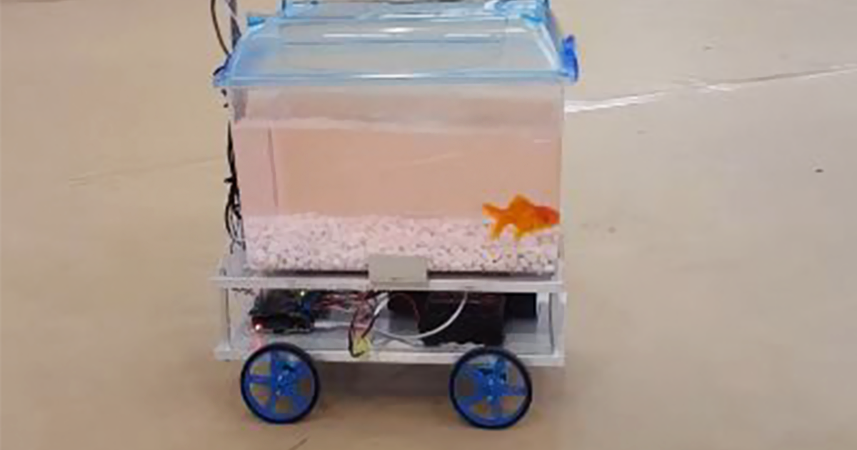 This Fish Can Decide Where To Go By Controlling Its Robotic Fish