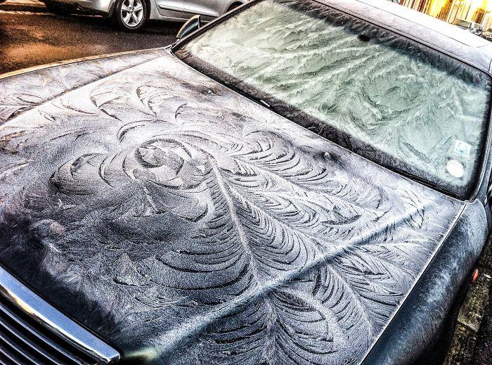 Coches sucios Recibe las plumas más bonitos Frost