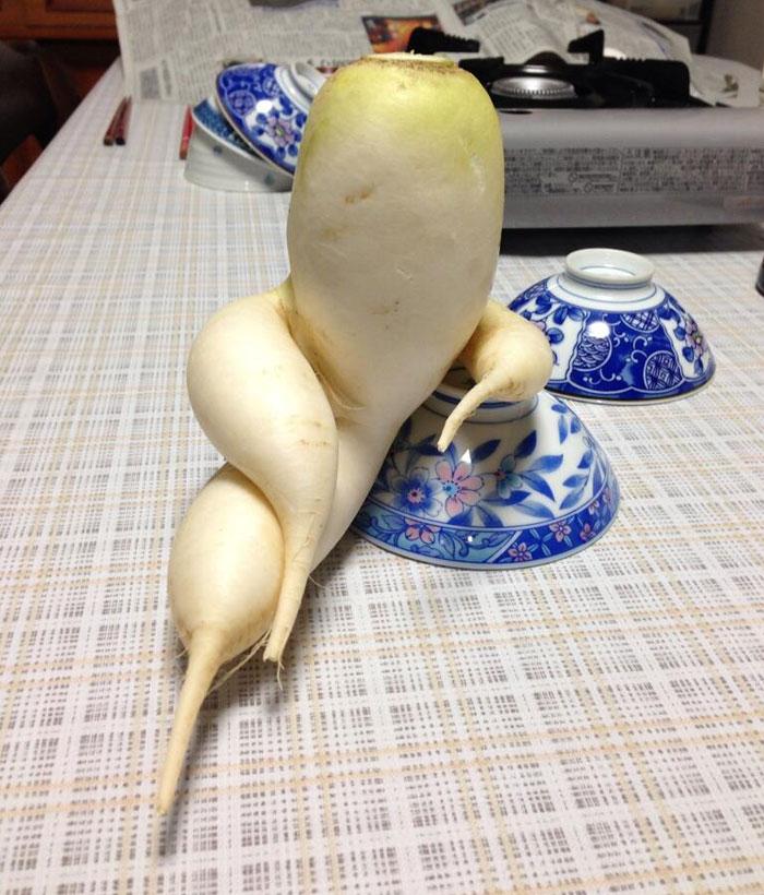 Funny Veggie
