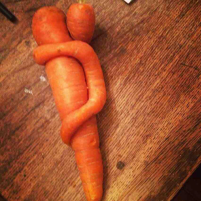 This Carrot Baby Won't Let Go Of Its Moma